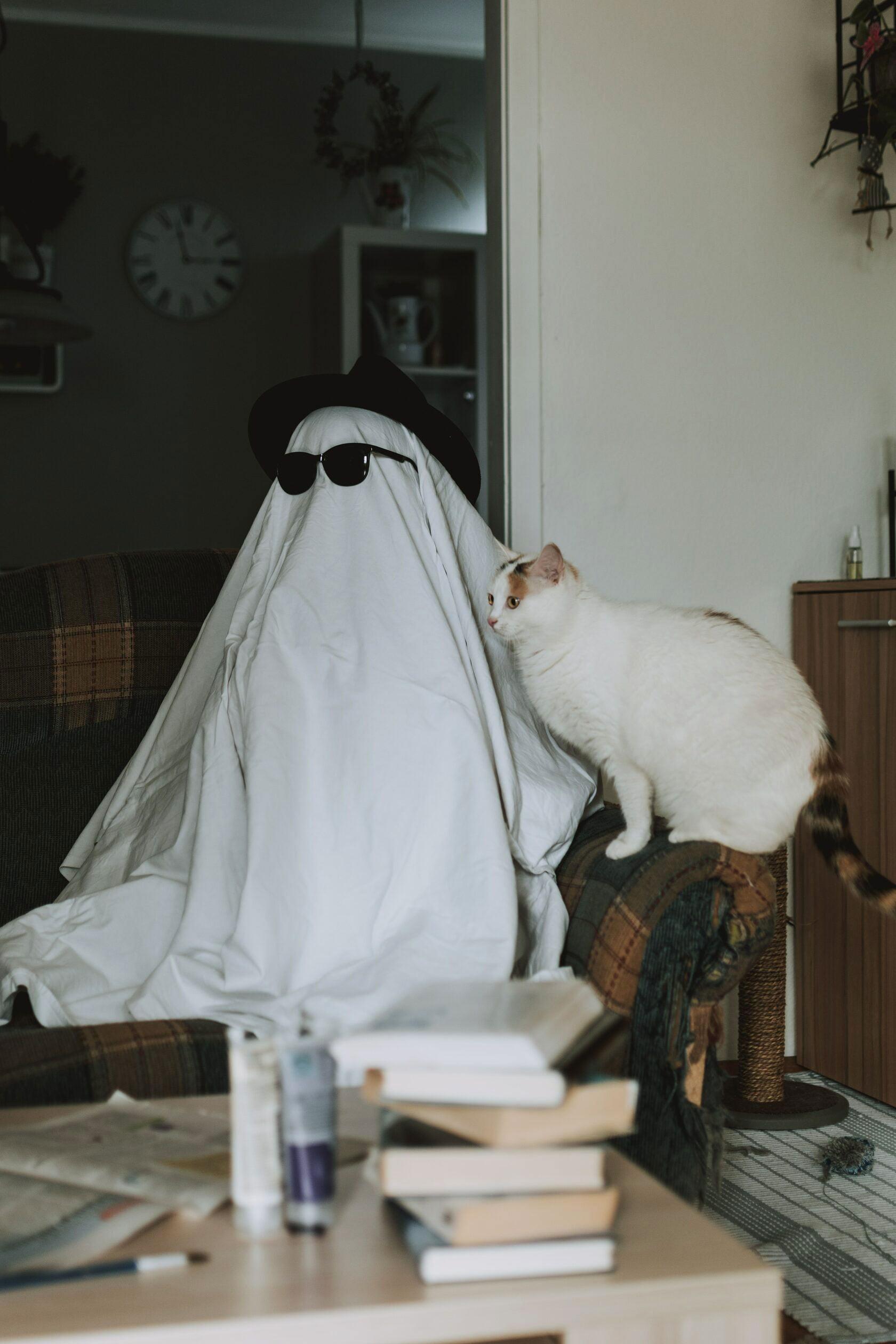 halloween costume ideas 5 34